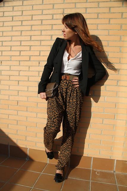leopard-50995-descalzaporelparque