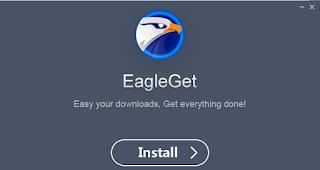Eagleget Download Manager PC Software free Download