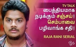 Raja Rani Serial, Vijay Tv   HOWSFULL