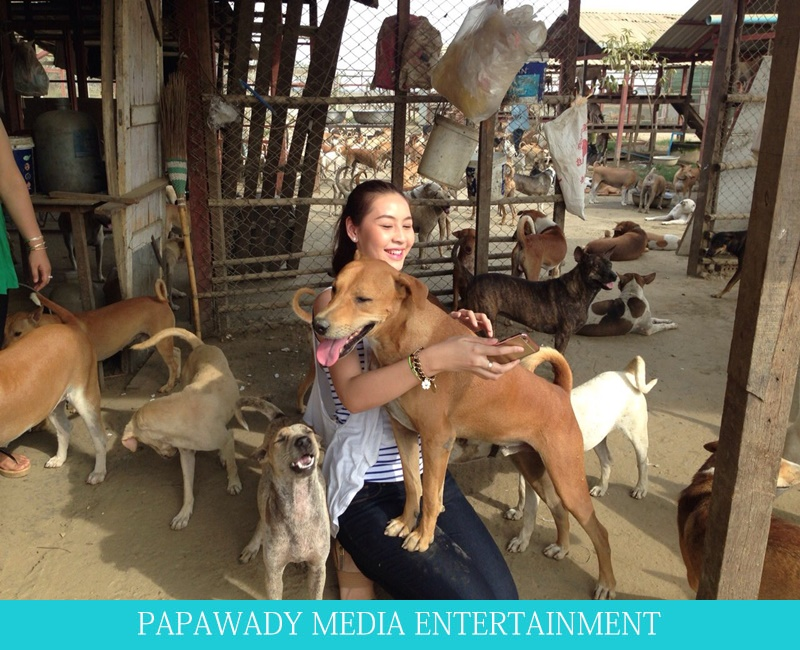 Thandar Bo and Kaung Pyae Visit to Yangon Animal Shelter