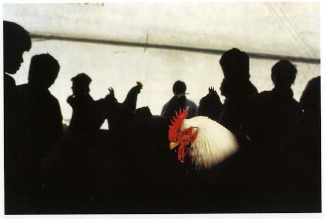 9bb685a50e1 Μετά την πρώτη μας συνάντηση, λίγο περισσότερο από 2 χρόνια, ο Gueorgui  κουβαλούσε μαζί του μερικές φωτογραφίες ελαφρώς σκισμένες. Ήταν το book του  !