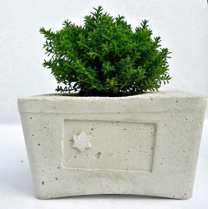 Betongefäß bepflanzt, mit Stern