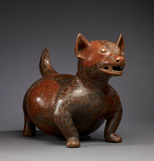 Precolumbian dog breed the chihuahua