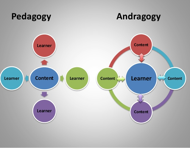 andragogy effective teaching philo Sample teaching philosophies  college of business administration consistent with my goal of becoming a more effective educator, my teaching style has evolved.