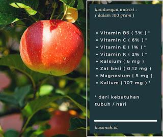 kandungan nutrisi apel