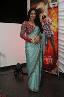 Regina Casandra in Lovely Beautiful saree Stunning Pics ~  Exclusive 31.JPG