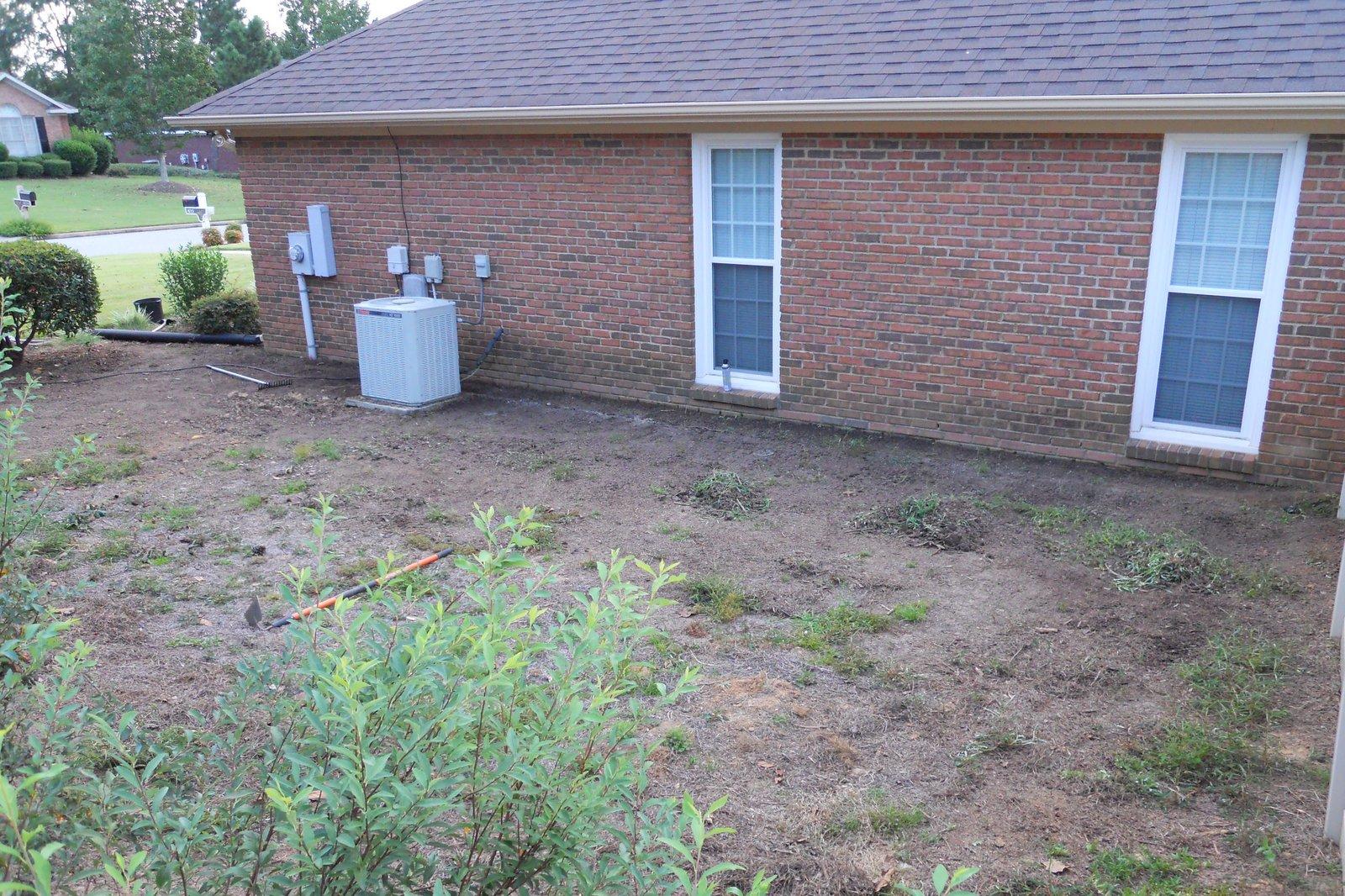 Georgia Home Garden: Moving the Georgia Home Garden - Part 1