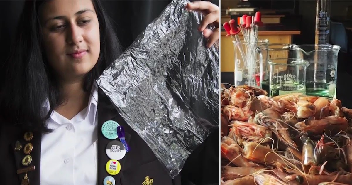 Teen Invents Biodegradable Plastic Made From Shrimp