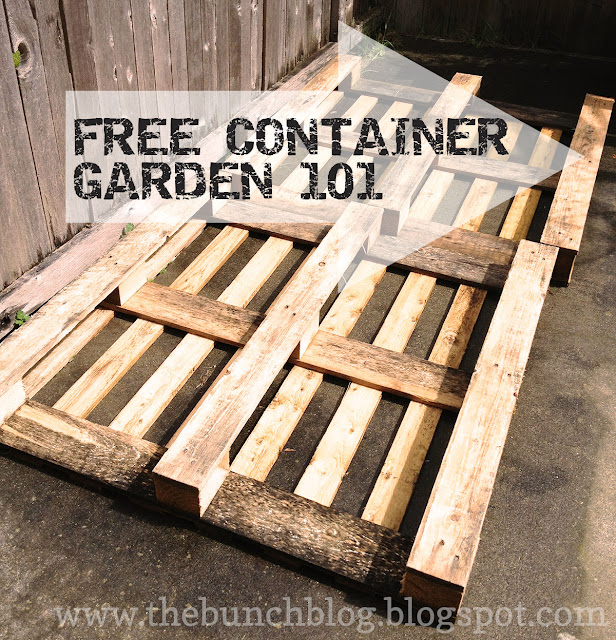 Pallet Veggie Garden: The Bunch- Handcrafted.stylishly: DIY Pallet Veggie Garden