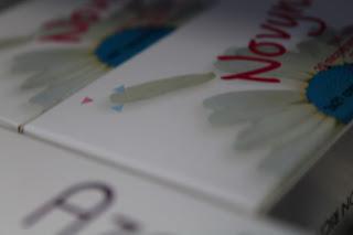 Pílulas anticoncepcionais proibidas - toda a verdade sobre o risco de trombose