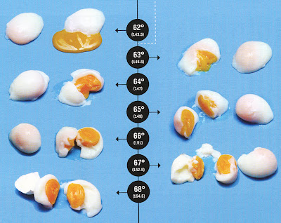 How awesome is this chart of sous vide temperatures for eggs alone justifies the price tag on inaugural issue david chang   lucky also fitbomb peach egg rh