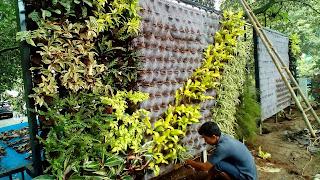 Tukang Taman Vertikal Serpong,Jasa Pembuatan Taman Vertikal di Serpong,Vertikal Garden di Serpong