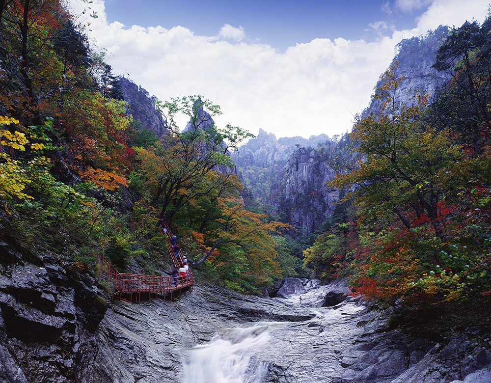 Wowkorea supporters 3 best fall foliage destinations in korea for Best fall destinations in the us