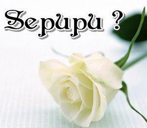 http://3.bp.blogspot.com/-FT-dZ9CzOeQ/T9S2EqRoOGI/AAAAAAAAEH0/ZvmdrdsbBBk/s1600/Nikah+Sepupu.jpg