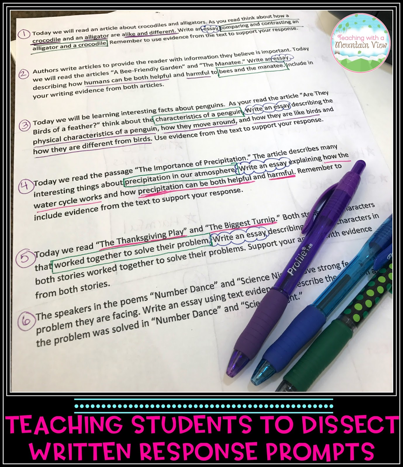 Teaching informational essay writing