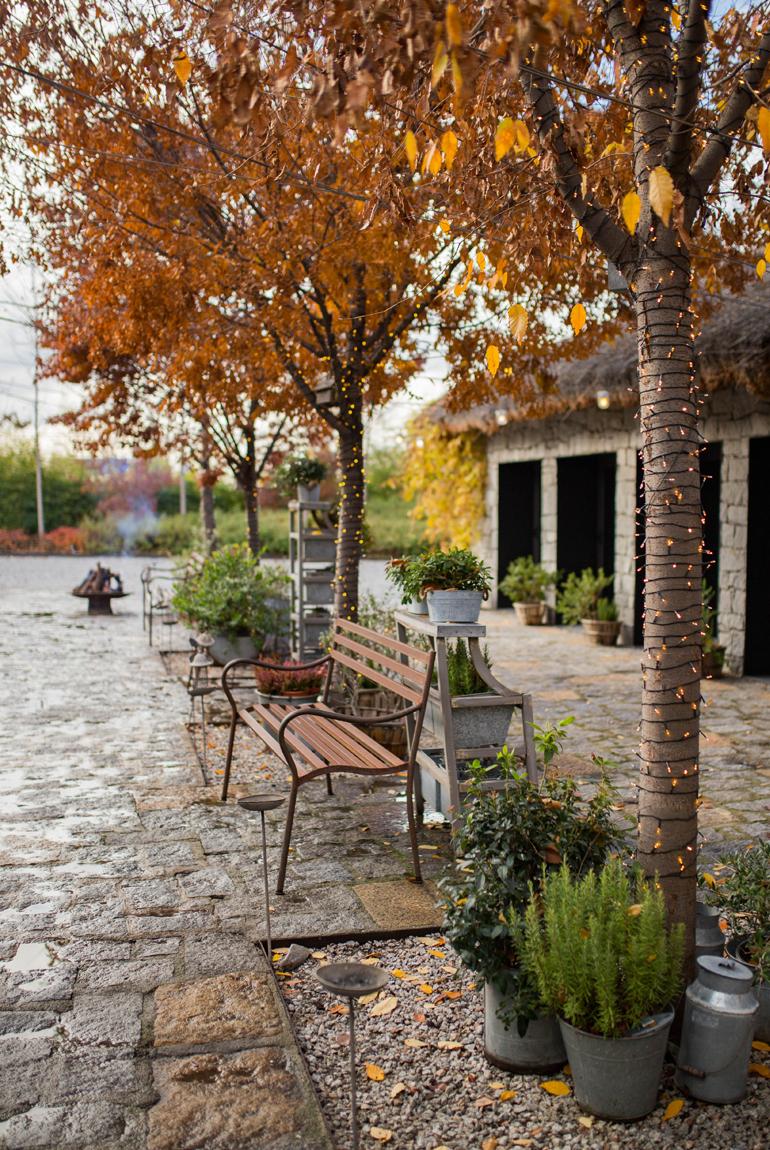 restaurante-filandon-pescaderias-coruñesas-naturaleza-entorno