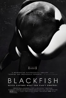CNN Blackfish SeaWorld Killer Whale Orca Documentary Poster