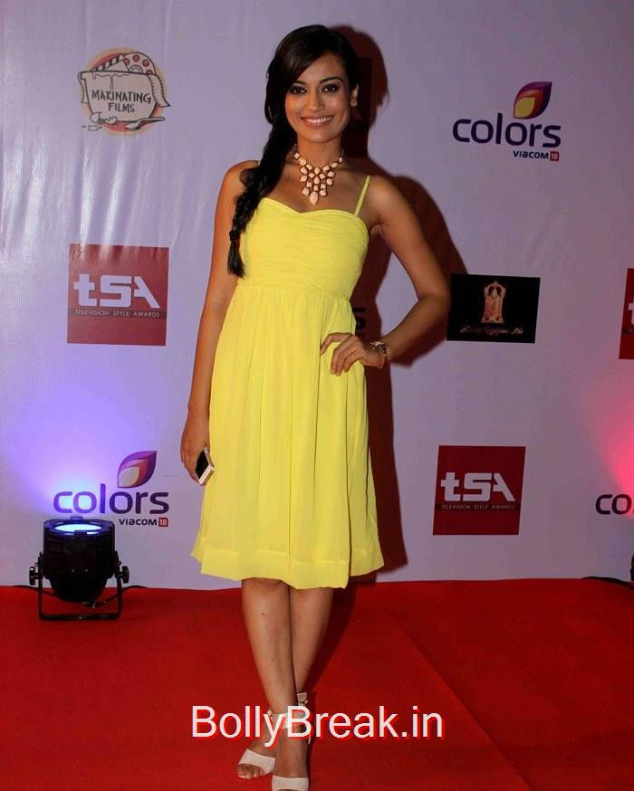 Television Style Awards, Hot HD Images of Sara Khan, Monica Bedi at Television Style Awards 2015