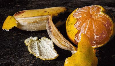 Kulit pisang dan kulit jeruk
