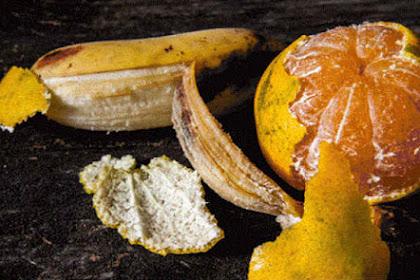 Jangan Dibuang, Inilah Segudang Manfaat Kulit Pisang dan Jeruk