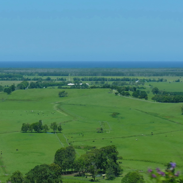Australien, Ostküste, Meer, grün, land, Farmland, Aussicht, Felder