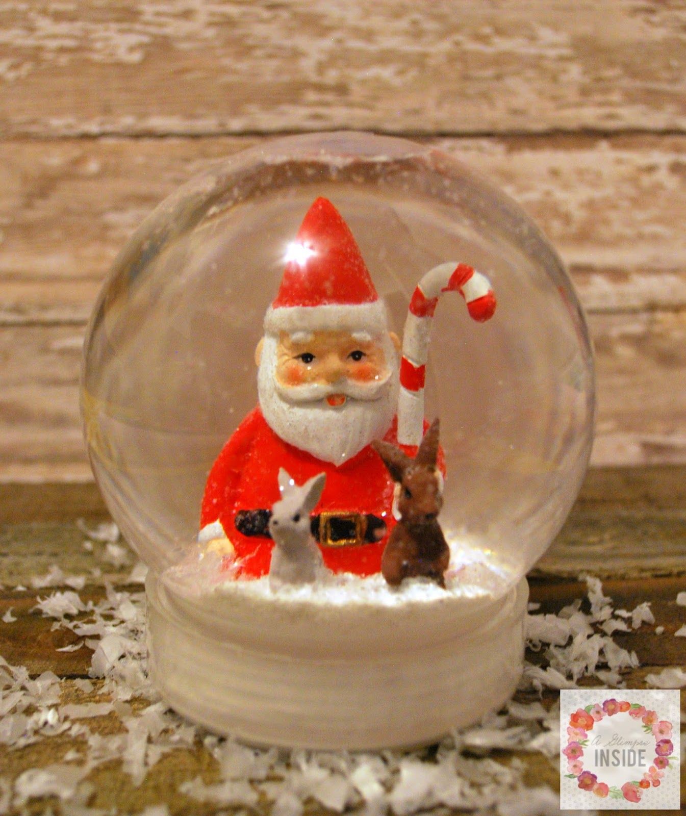 Diy Snow Globe A Glimpse Inside