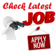 www.emitragovt.com/govt-job-in-rajasthan-latest-news-for-sarkari-naukri-apply-online-upcoming-vacancies