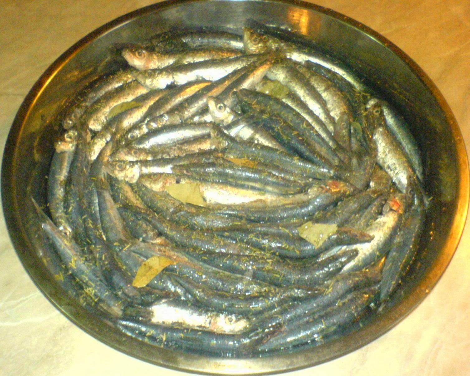 peste, sardina, retete de peste, preparate din peste, mancaruri cu peste, retete de mancare, retete culinare,