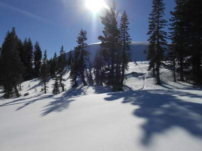 invisible pain, hidden pain, snow, donner summit, conifers, spiritual healing