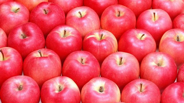 wallpaper gratis gambar apel merah