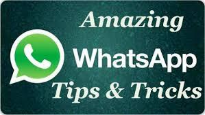 cara mengetahui siapa yang sering lihat profil whatsapp kita