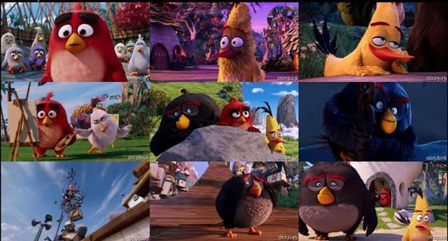 Angry Birds La Pelicula (2016) DVDRip Latino