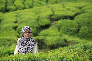 bangladeshi girl hijab