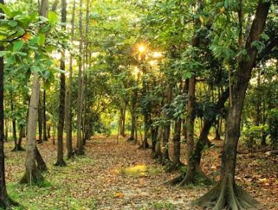 10 Tempat Wisata Bekasi, Jawa Barat