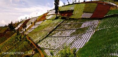 bukit baper sirampog brebes