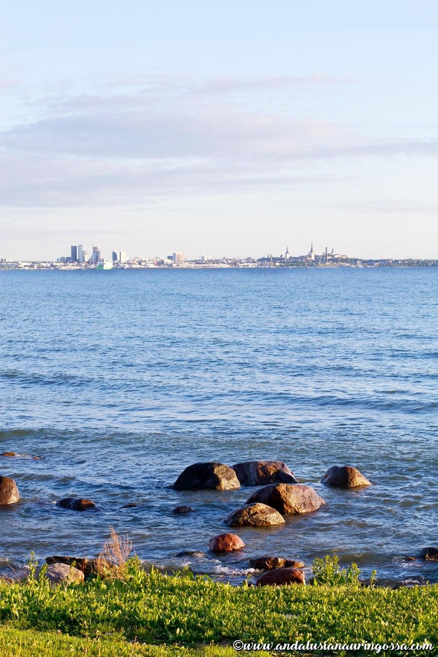 Noa_Tallinna_Tallinnan parhaat ravintolat_Andalusian auringossa_ruokablogi_matkablogi_18