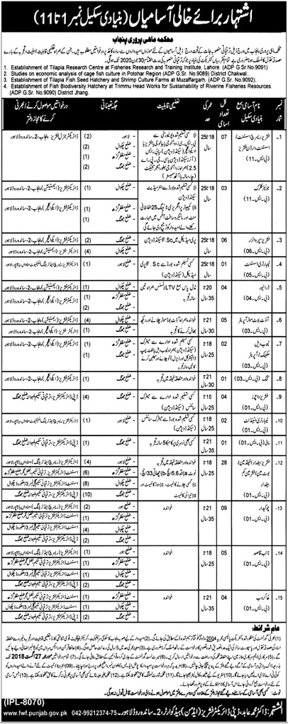 Punjab Fisheries Department Latest Jobs Aug 2018
