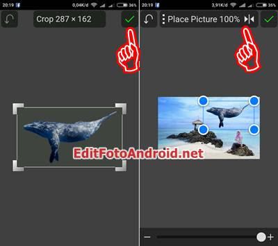 Cara Edit Foto yang Ada Ikan Paus terbang