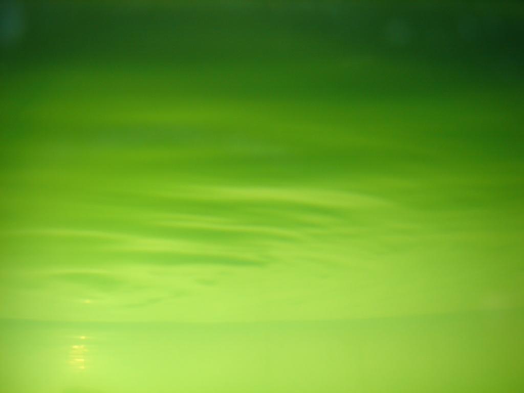green wallpaper art %25281%2529.jpg