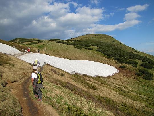 Trawersujemy szczyt Koniarky (1535 m n.p.m.), przed nami Pekelnik (1609 m n.p.m.).
