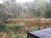Currawong Bush Park