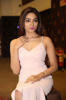 Aishwarya Devan in lovely Light Pink Sleeveless Gown 009.JPG