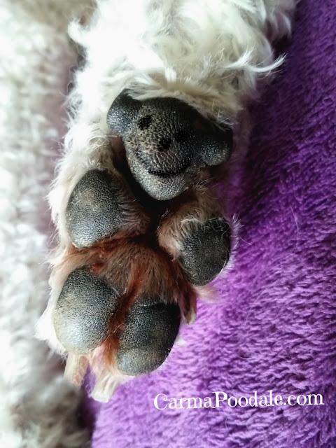 Carma Poodale's foot