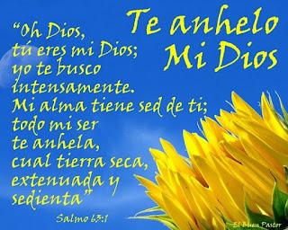 radio cristiana dominicana - emisora cristiana dominicana - emisora latina