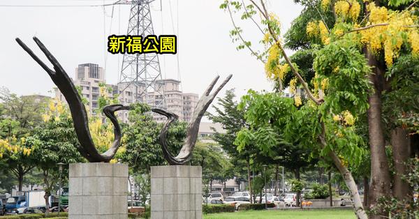 台中太平|新福公園|阿勃勒|紫薇花|水雉裝置藝術|綠草坪|籃球場|運動休閒