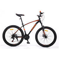 26 fastron f260dt mtb sepeda