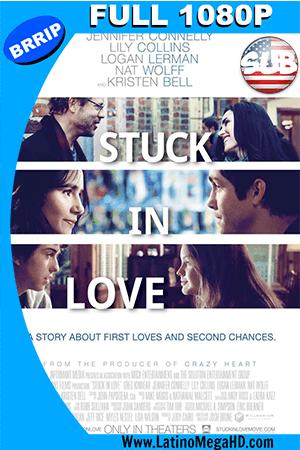 Stuck In Love (2013) Subtitulada HD Full 1080p ()