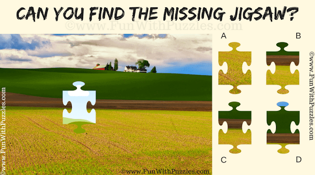 It is an easy jigsaw puzzle in which one has to find the missing piece of jigsaw in given picture
