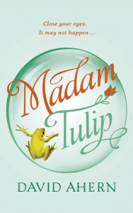 Book cover for Madam Tulip