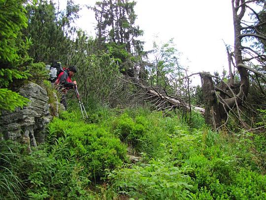 Strome zejście z Wielkiej Wapiennicy.